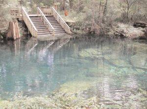 Peacock Springs Pool and Stairs
