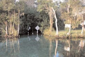 The entrance to Three Sisters Spring via the Crystal River